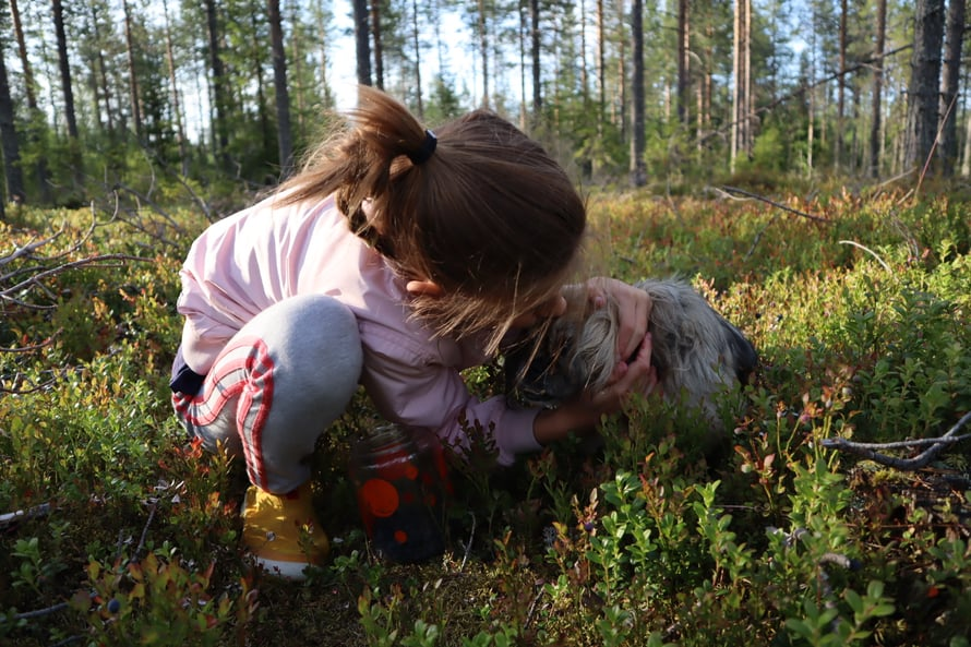 Hiljaisessa metsässä olemisen pitäisi olla jokaisen ihmisen ihmisoikeus.
