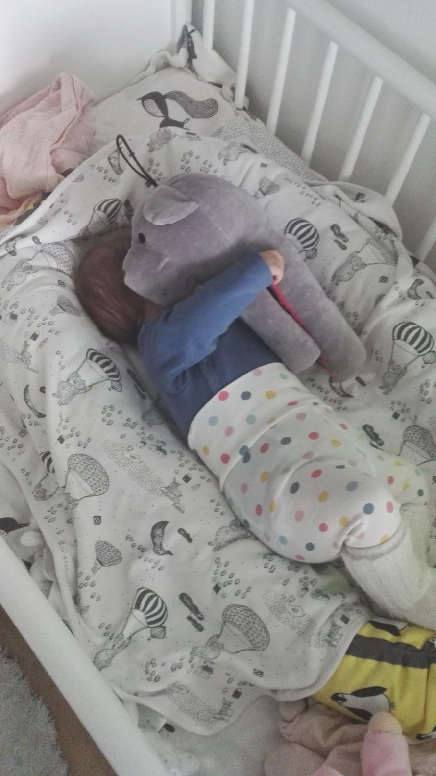 Unikarhu kainalossa