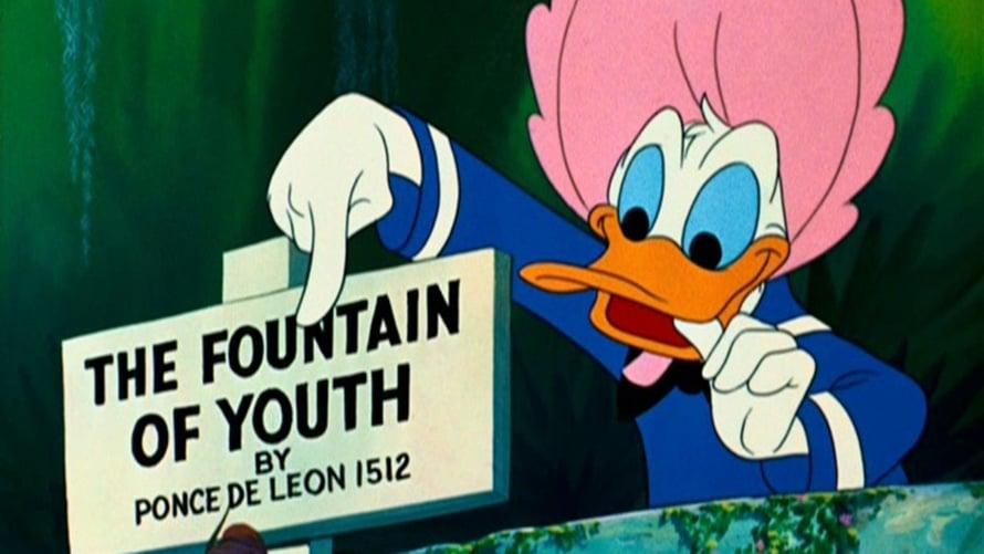 Aku Ankka väittää löytäneensä nuoruuden lähteen lyhytanimaatiossa Don's Fountain of Youth (1953). Kuva: KAVI.