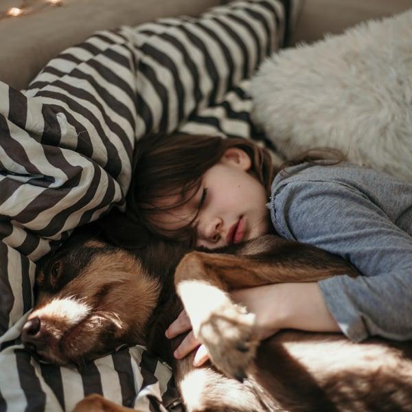 Lemmikki on aina perheessä aikuisen vastuulla, vaikka se nimellisesti voisikin olla lapsen. Kuva: iStockphoto